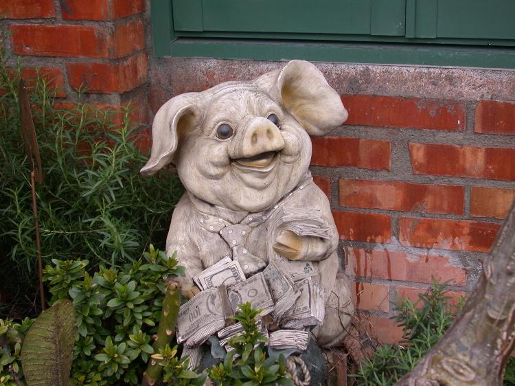 Ima Pig